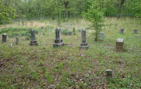 *OVERVIEW WHITE ANTIOCH,  - Faulkner County, Arkansas |  *OVERVIEW WHITE ANTIOCH - Arkansas Gravestone Photos