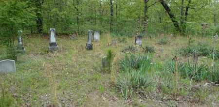 *OVERVIEW 4 WHITE ANTIOCH,  - Faulkner County, Arkansas |  *OVERVIEW 4 WHITE ANTIOCH - Arkansas Gravestone Photos