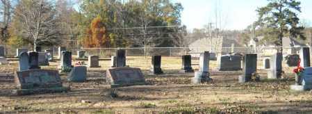 *PEARSON CEMETERY OVERVIEW,  - Faulkner County, Arkansas    *PEARSON CEMETERY OVERVIEW - Arkansas Gravestone Photos