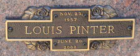 PINTER, LOUIS - Faulkner County, Arkansas | LOUIS PINTER - Arkansas Gravestone Photos