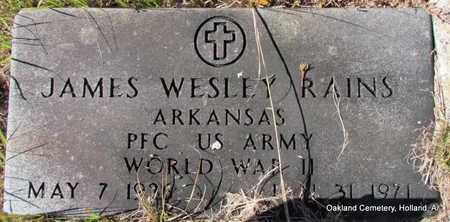 RAINS (VETERAN WWII), JAMES WESLEY - Faulkner County, Arkansas   JAMES WESLEY RAINS (VETERAN WWII) - Arkansas Gravestone Photos