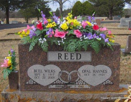 REED, BUEL WILKS - Faulkner County, Arkansas | BUEL WILKS REED - Arkansas Gravestone Photos
