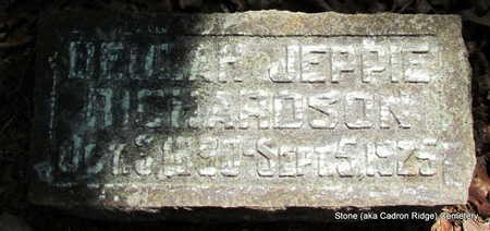 RICHARDSON, BEULAH JEPPIE - Faulkner County, Arkansas | BEULAH JEPPIE RICHARDSON - Arkansas Gravestone Photos