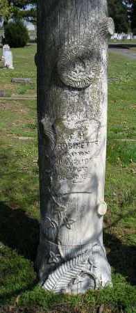 ROBINETTE, CHESLEY H - Faulkner County, Arkansas | CHESLEY H ROBINETTE - Arkansas Gravestone Photos