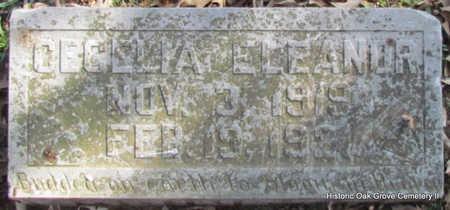 ROBINETTE, CECELIA ELEANOR - Faulkner County, Arkansas   CECELIA ELEANOR ROBINETTE - Arkansas Gravestone Photos