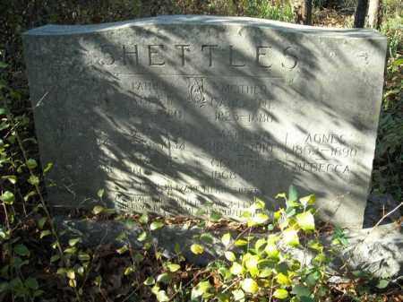 SHETTLES, GEORGE T. - Faulkner County, Arkansas | GEORGE T. SHETTLES - Arkansas Gravestone Photos