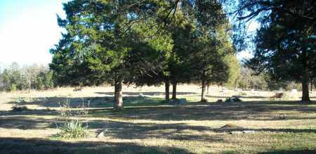 *SINAI CEMETERY OVERVIEW 1,  - Faulkner County, Arkansas    *SINAI CEMETERY OVERVIEW 1 - Arkansas Gravestone Photos