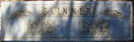 SKINNER, DAVID S. - Faulkner County, Arkansas | DAVID S. SKINNER - Arkansas Gravestone Photos