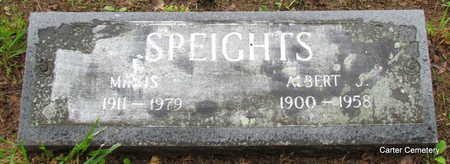 SPEIGHTS, MIRTIS - Faulkner County, Arkansas | MIRTIS SPEIGHTS - Arkansas Gravestone Photos