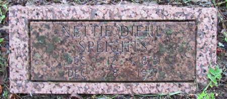 SPEIGHTS, NETTIE - Faulkner County, Arkansas | NETTIE SPEIGHTS - Arkansas Gravestone Photos