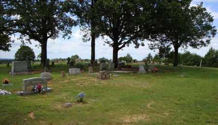 *SPIRES OVERVIEW 2,  - Faulkner County, Arkansas |  *SPIRES OVERVIEW 2 - Arkansas Gravestone Photos