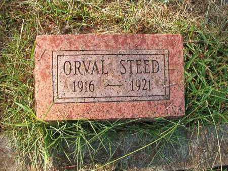 STEED, ORVAL - Faulkner County, Arkansas | ORVAL STEED - Arkansas Gravestone Photos