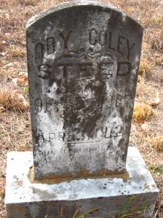 STEED, OBY COLEY - Faulkner County, Arkansas | OBY COLEY STEED - Arkansas Gravestone Photos