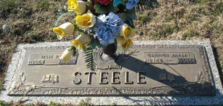 STEELE, JESSE RAY - Faulkner County, Arkansas | JESSE RAY STEELE - Arkansas Gravestone Photos