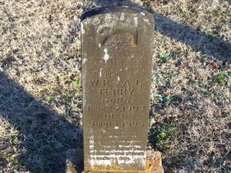 TERRY, ALICE B. - Faulkner County, Arkansas | ALICE B. TERRY - Arkansas Gravestone Photos