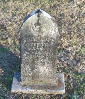 TERRY, VIDER LUCY - Faulkner County, Arkansas   VIDER LUCY TERRY - Arkansas Gravestone Photos
