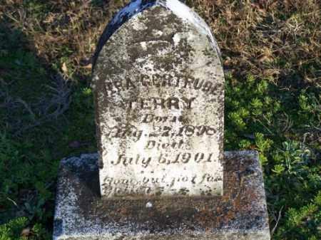 TERRY, VIRA GERTRUDE - Faulkner County, Arkansas | VIRA GERTRUDE TERRY - Arkansas Gravestone Photos