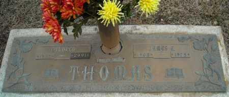 THOMAS, JAMES E. - Faulkner County, Arkansas | JAMES E. THOMAS - Arkansas Gravestone Photos