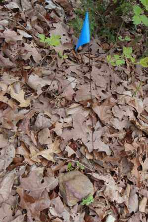 UNKNOWN 18,  - Faulkner County, Arkansas |  UNKNOWN 18 - Arkansas Gravestone Photos