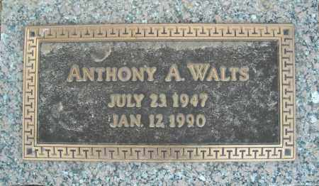 WALTS, ANTHONY A. - Faulkner County, Arkansas | ANTHONY A. WALTS - Arkansas Gravestone Photos