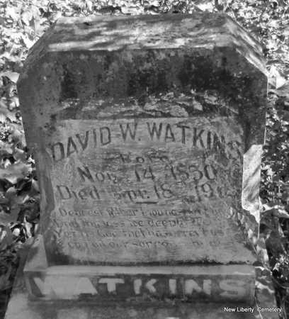 WATKINS, DAVID W. - Faulkner County, Arkansas | DAVID W. WATKINS - Arkansas Gravestone Photos