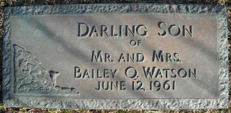 WATSON, DARLING SON - Faulkner County, Arkansas | DARLING SON WATSON - Arkansas Gravestone Photos
