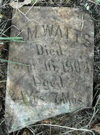 WATTS, S.M. - Faulkner County, Arkansas   S.M. WATTS - Arkansas Gravestone Photos