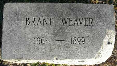 WEAVER, BRANT - Faulkner County, Arkansas   BRANT WEAVER - Arkansas Gravestone Photos