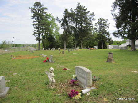 *HARTJE CEMETERY OVERVIEW,  - Faulkner County, Arkansas |  *HARTJE CEMETERY OVERVIEW - Arkansas Gravestone Photos