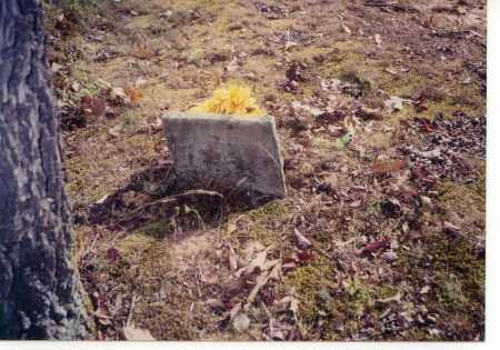 WHARTON, PLEASANT P. - Faulkner County, Arkansas | PLEASANT P. WHARTON - Arkansas Gravestone Photos