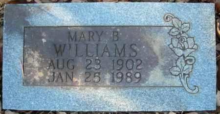 WILLIAMS, MARY B. - Faulkner County, Arkansas | MARY B. WILLIAMS - Arkansas Gravestone Photos