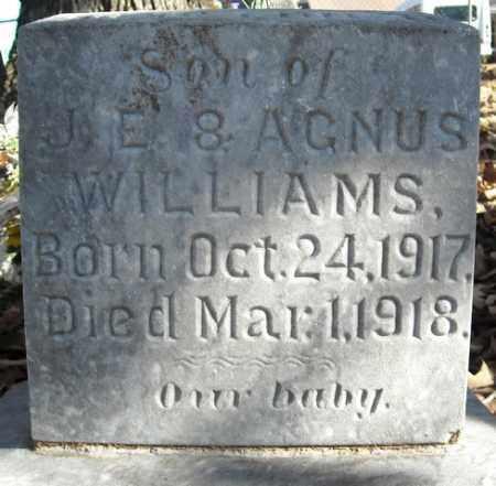 WILLIAMS, SON - Faulkner County, Arkansas   SON WILLIAMS - Arkansas Gravestone Photos