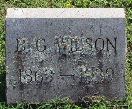 WILSON, BAILEY GUESS - Faulkner County, Arkansas | BAILEY GUESS WILSON - Arkansas Gravestone Photos