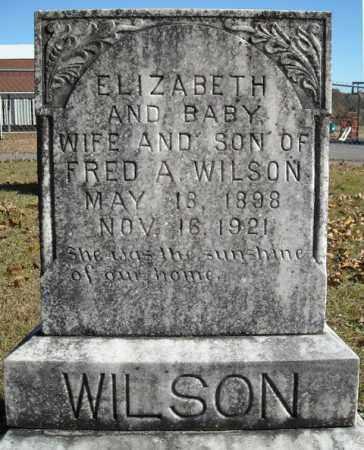 WILSON, ELIZABETH - Faulkner County, Arkansas | ELIZABETH WILSON - Arkansas Gravestone Photos