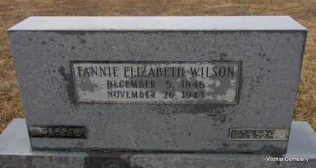 WILSON, FANNIE ELIZABETH - Faulkner County, Arkansas   FANNIE ELIZABETH WILSON - Arkansas Gravestone Photos