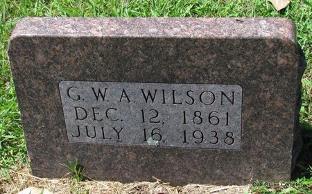WILSON, GEORGE W A - Faulkner County, Arkansas | GEORGE W A WILSON - Arkansas Gravestone Photos