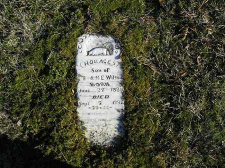 WILSON, HORACE S. - Faulkner County, Arkansas | HORACE S. WILSON - Arkansas Gravestone Photos