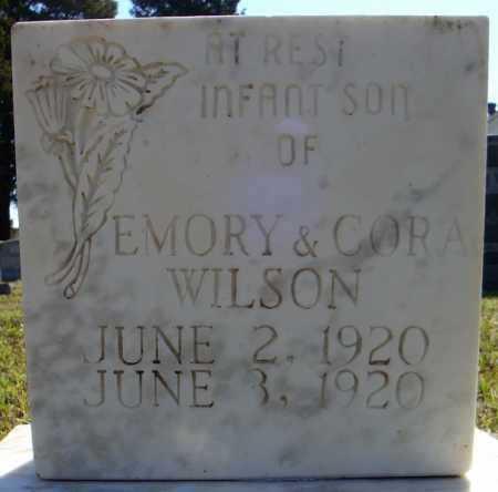 WILSON, INFANT SON (1920) - Faulkner County, Arkansas | INFANT SON (1920) WILSON - Arkansas Gravestone Photos