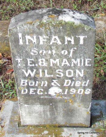 WILSON, INFANT SON #1 (1908) - Faulkner County, Arkansas | INFANT SON #1 (1908) WILSON - Arkansas Gravestone Photos