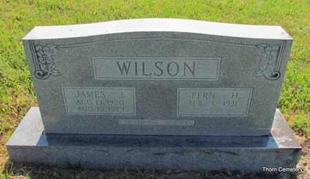 WILSON, JAMES J. - Faulkner County, Arkansas | JAMES J. WILSON - Arkansas Gravestone Photos