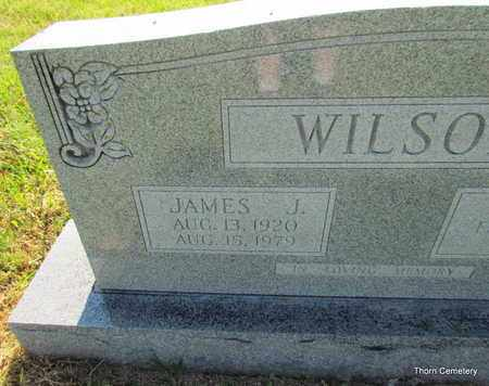 WILSON, JAMES J (CLOSE UP) - Faulkner County, Arkansas | JAMES J (CLOSE UP) WILSON - Arkansas Gravestone Photos