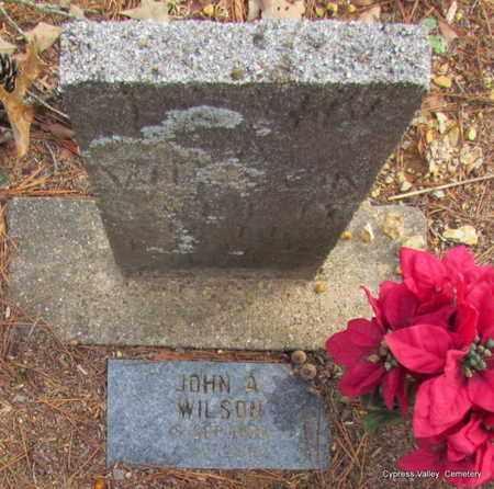 WILSON, JOHN A. - Faulkner County, Arkansas | JOHN A. WILSON - Arkansas Gravestone Photos
