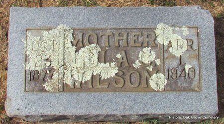 WILSON, LULA C - Faulkner County, Arkansas   LULA C WILSON - Arkansas Gravestone Photos
