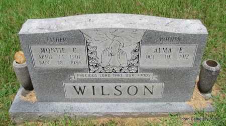 WILSON, ALMA E - Faulkner County, Arkansas   ALMA E WILSON - Arkansas Gravestone Photos