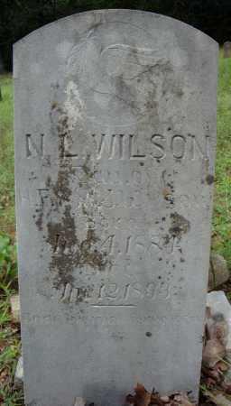 WILSON, N.L. - Faulkner County, Arkansas | N.L. WILSON - Arkansas Gravestone Photos
