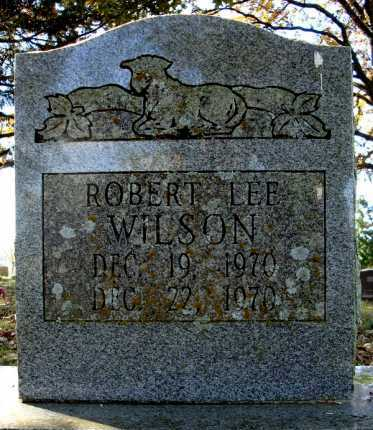 WILSON, ROBERT LEE - Faulkner County, Arkansas | ROBERT LEE WILSON - Arkansas Gravestone Photos
