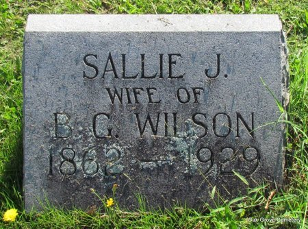 WILSON, SALLIE - Faulkner County, Arkansas   SALLIE WILSON - Arkansas Gravestone Photos