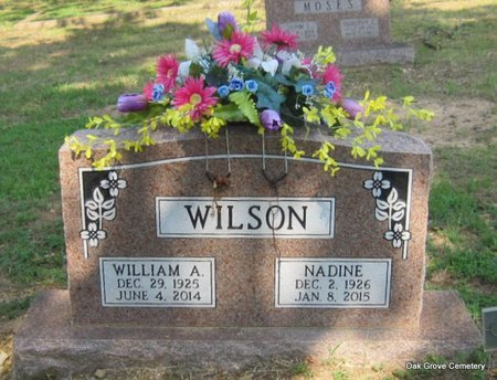 WILSON, WILLIAM A - Faulkner County, Arkansas | WILLIAM A WILSON - Arkansas Gravestone Photos