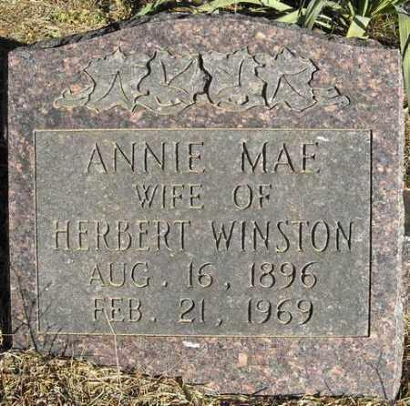 WINSTON, ANNIE MAE - Faulkner County, Arkansas   ANNIE MAE WINSTON - Arkansas Gravestone Photos