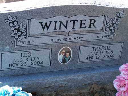 WINTER, TRESSIE - Faulkner County, Arkansas | TRESSIE WINTER - Arkansas Gravestone Photos
